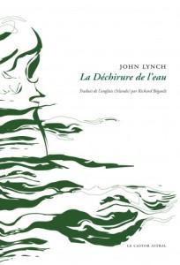 la-dechirure-CV1-Lynch-325x479