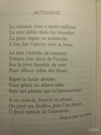 Automne - Gwenn-Aël Bolloré